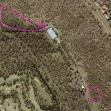 The sites of two patches of colourful plantings on Red Hill, now listed on the ACT Heritage Register.