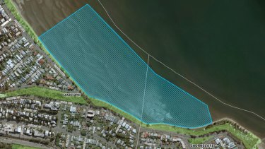 The proposed dog off-leash area at Sandgate in Brisbane's north.