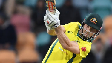 Shaun Marsh's century against South Africa in Hobart was a highlight.