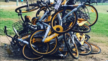 Ride-share bikes dumped in Waverley Oval last year.