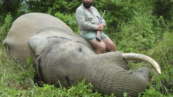 Killing season: Crisis time for Africa's famed wildlife