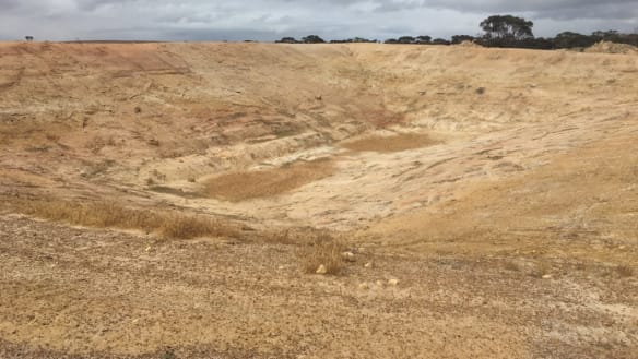 WA farmers and government at odds on drought assistance