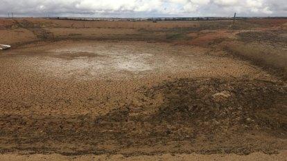 'It's a moonscape': WA farmers battle freak drought in the South West