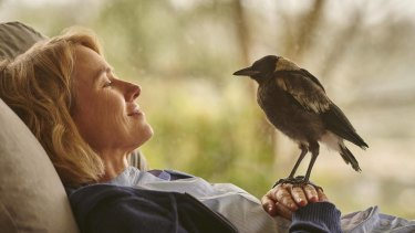 Naomi Watts and the magpie in the film Penguin Bloom.