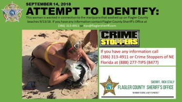 A woman is wanted after marijuana washed up on a Florida beach.