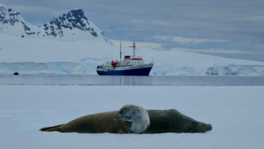 The Homeward Bound STEMM leadership project heads to Antarctica in 2019.