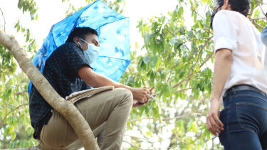 Salvadoran student Alexander Contreras up a tree.