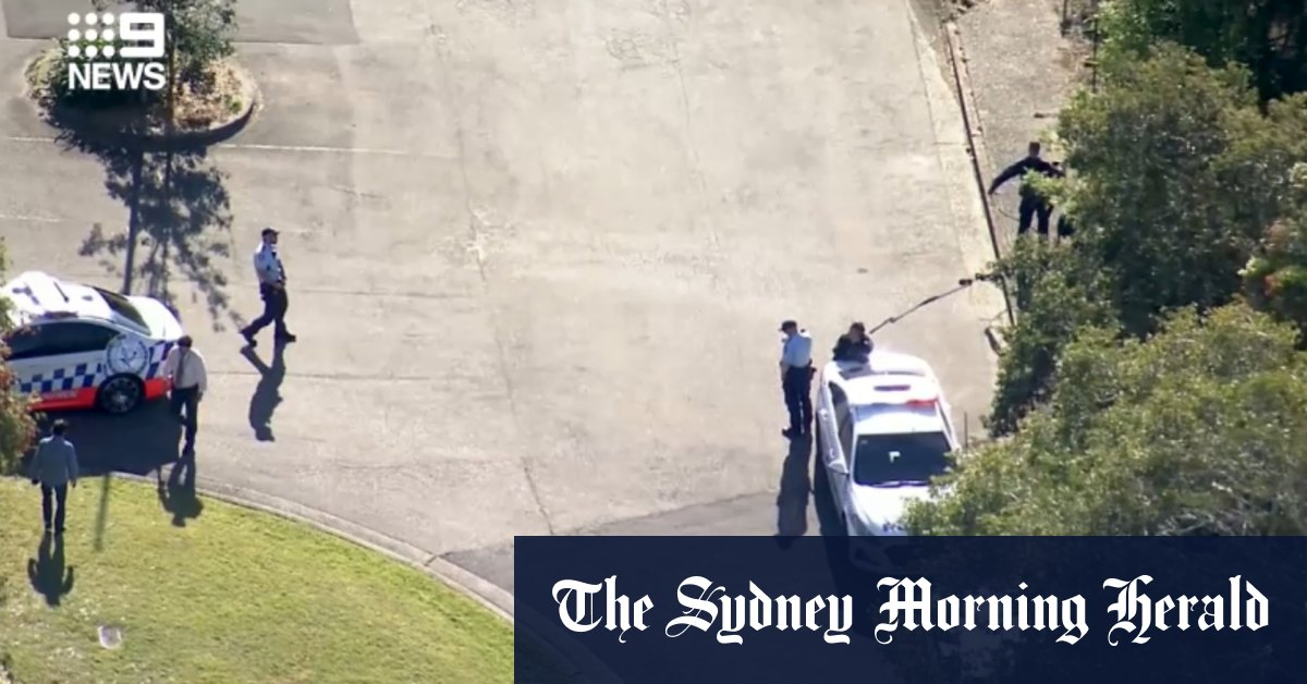 Man taken to hospital after stabbing on Sydney's northern beaches – Sydney Morning Herald