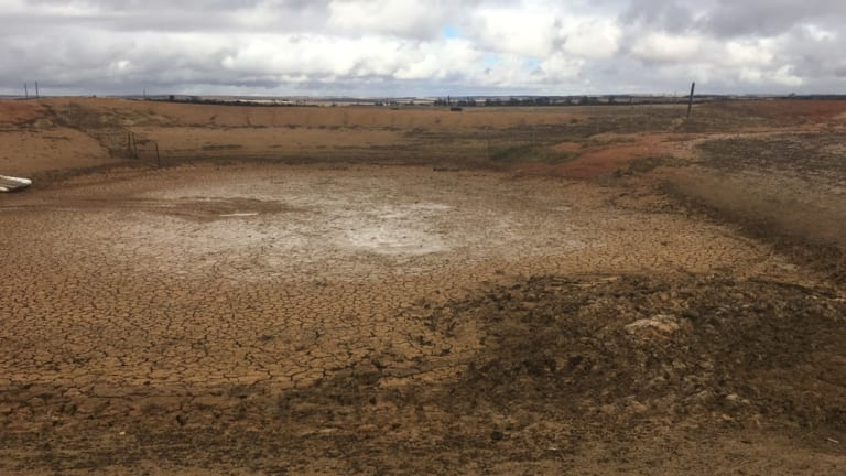 Farmers near Jerramungup – about 480 kilometres south east of Perth – say they are living in a dustbowl.