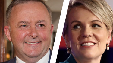 New opposition leader Anthony Albanese does not have statistics on his side in his ambition to become prime minister in 2022. Tanya Plibersek cited family reasons for bowing out of the Labor leadership contest.