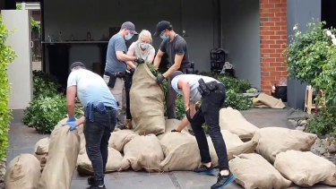 Police seze hundreds of cannabis plants in Lalor in October.