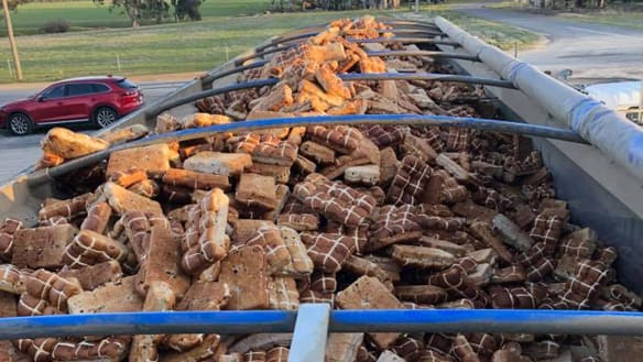 Tonnes of buns unwrapped at footy club, sent to feed hot, cross cattle