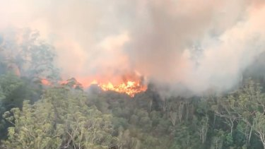The fire on Fraser Island, which has been burning for weeks, has ravaged half of the island.