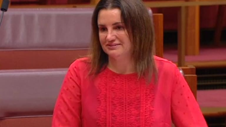 Cuts to welfare moved Jacqui Lambie to tears in 2017.