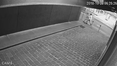 CCTV footage shows Jackson Williams grab the woman from behind.