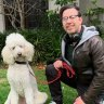 How I learnt to love man's best friend