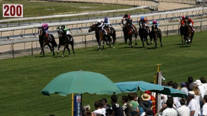 Race-by-race preview and tips for Wyong on Thursday