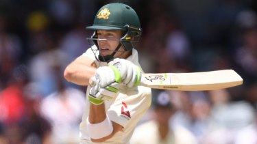 Tim Paine at the WACA late last year.