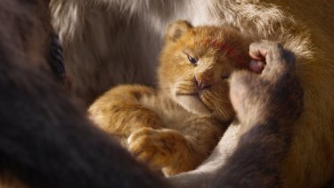 Baby Simba in Disney's remake of The Lion King.