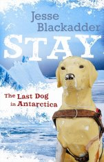 Stay: The Last Dog in Antarctica by Jesse Blackadder.