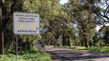 Appin Road cuts through the home of Sydney's last chlamydia-free koala population.