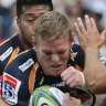 Banks hopes derbies will lure back fans as Brumbies win big in Tokyo