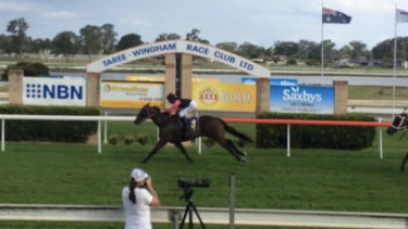 Only Money crossing the finish line at Taree  racecourse in 2015.