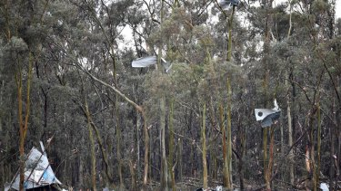 Sheets of corrugated iron were blown into tree branches by the tornado.