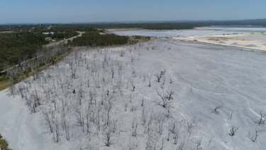 Toxic legacy:An ash dam at Eraring Power Station on the NSW Central Coast.