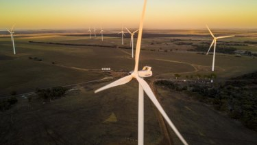 Collgar wind farm features 111 turbines.