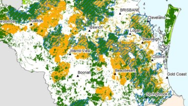 Blue-hatched areas show critical koala habitat south of Brisbane in August 2020.