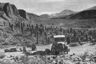 The Blossfeld expedition in Argentina in 1938.