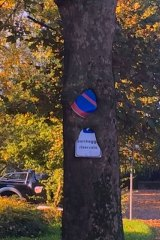 A good excuse for a parking fine – the tree ate the sign!