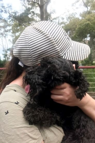 Luna was reunited with her owner on January 8.