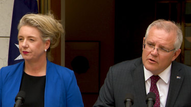 Prime Minister Scott Morrison is standing by Agriculture Minister Bridget McKenzie over her handling of sports grants.