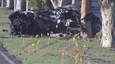 The driver was dragged from the burning car by police, but died at the scene