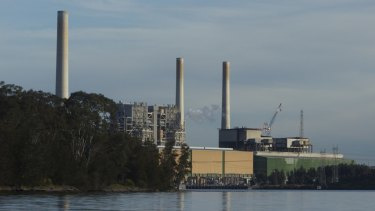 Delta Electricity's Vales Point coal plant is 30 km from the nearest EPA air monitoring site, EJA's report claims.