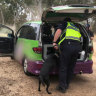 Seventh life-threatening overdose at Rainbow Serpent festival