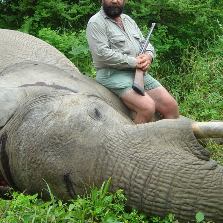 A British big-game hunter poses with an elephant he shot in Zimbabwe.