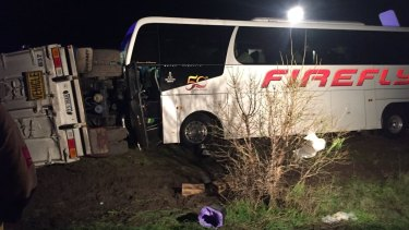 A bus driver is dead after a coach crashed into truck trailers on the Western Highway