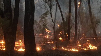 Woman charged over fire that destroyed homes in northern NSW
