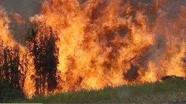 Fire and Rescue received 100,000 triple zero calls during the bushfire season.