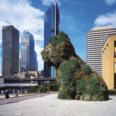 "Koons's ""Puppy"" sat outside Sydney's Museum of Contemporary Art in the mid-1990s."