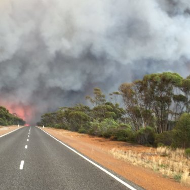 Witnesses for DFES and the Department of Parks and Wildlife agreed they had never seen anything like it before.