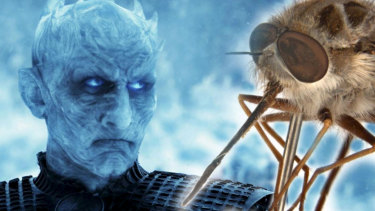 The Night King from Game of Thrones and the Paramonovius night king.