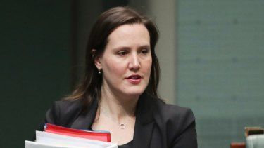Kelly O'Dwyer, Minister for Jobs and Industrial Relations, will deliver the federal government's first statement on women's economic security in coming weeks.