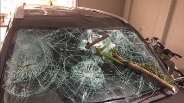 A tree branch fell on a moving vehicle in Geraldton this morning, with the driver and passenger escaping injury.