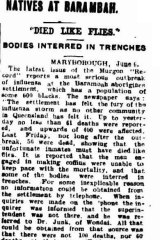 An excerpt from an article published in the Brisbane Courier on June 7, 1919.