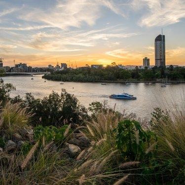 The Brisbane River.