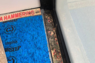 Mould beneath the carpet in Lee Lits' apartment